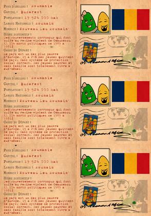 piece_identité_Roumanie.jpg