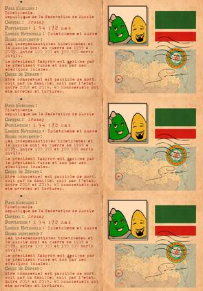 piece identité Tchéchénie.jpg