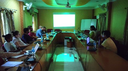 Program Review & Consultation with partner