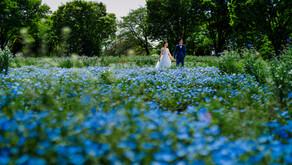 色鮮やかなフラワー・ガーデンでのウェディングフォト - 昭和記念公園