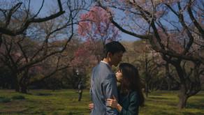 もうすぐ満開の桜でエンゲージメントフォト撮影を