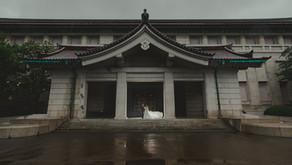 早朝の東京国立博物館で、ドレスロケーションフォト