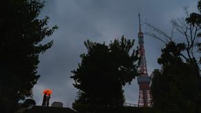 東京タワーのふもと、芝公園で和装ロケ