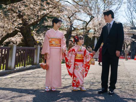 桜シーズンに、赤坂日枝神社での七五三