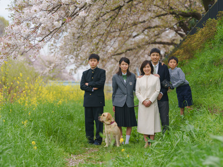桜満開の野川で家族写真