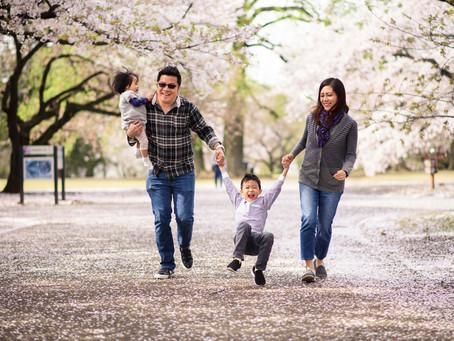 シンガポールからのご家族との再会 - 桜フォトセション