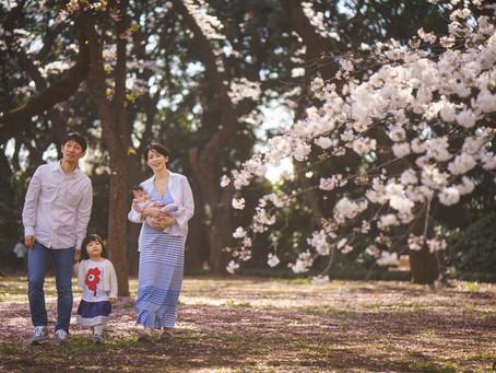 桜満開でのハーフバースデー