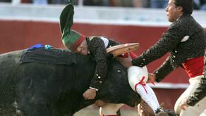 カリフォルニア・セントラルバレーの闘牛