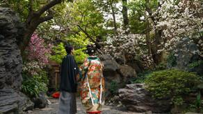 つきじ治作 - 梅が咲き始めた頃の結婚式