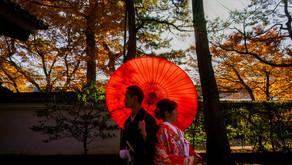 紅葉の三渓園でロケーションフォト