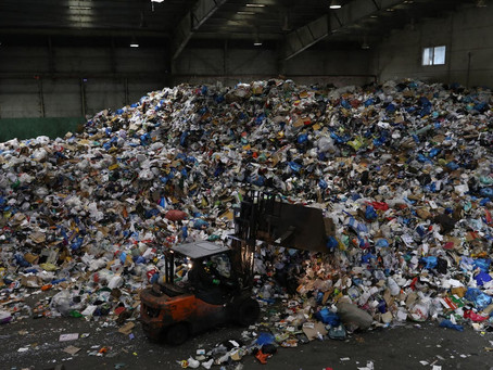 'Massive' impact of food waste on climate with nearly a billion tons binned each year.