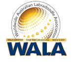 Great Glen Australian Labradoodles WALA