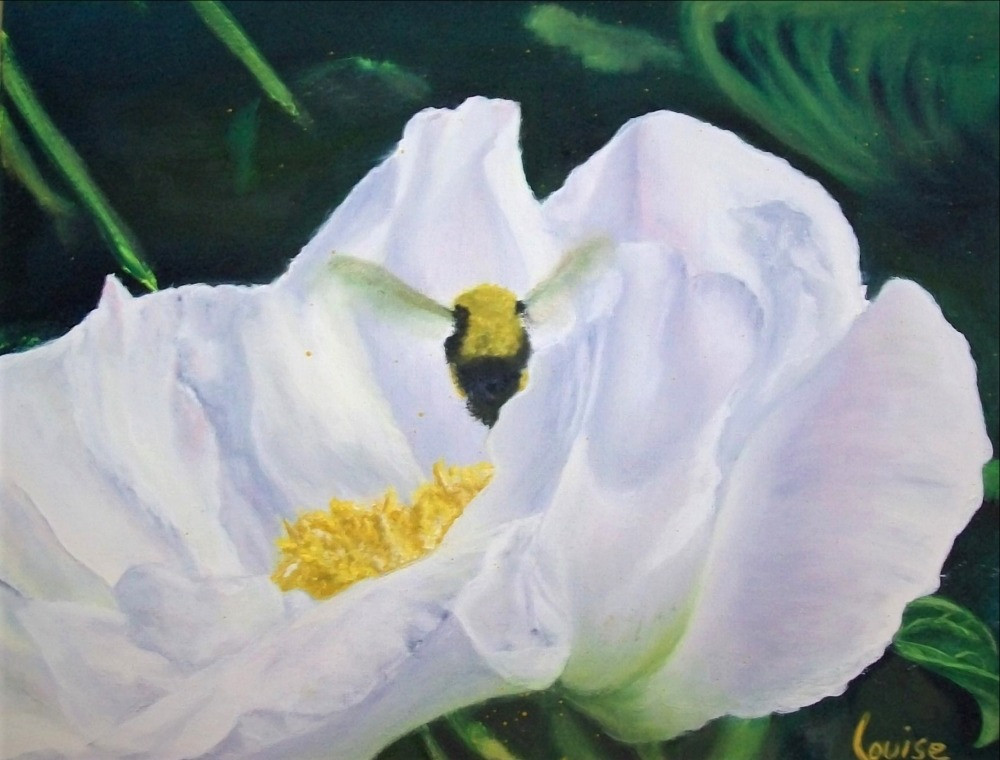 floraison_estivale,_huile,_original,_11X