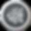 SERVICES_Website-02.png