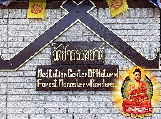 Logo - Medtitation in natural Forest Mon