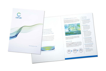 Cerule Kit Cover and Brochure