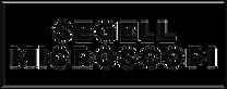 Logo-Segell-Microscopi 2.png