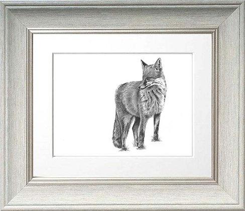 Standing Fox