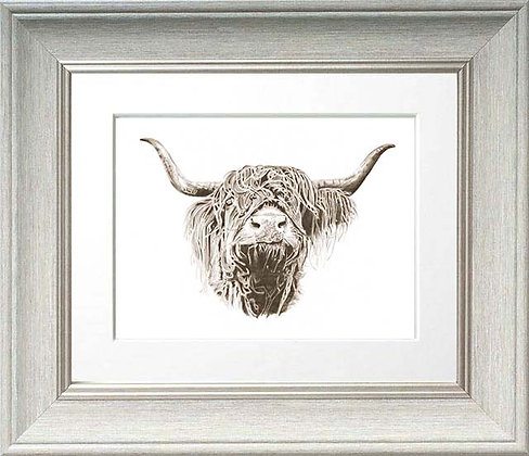 Highland Cow Head