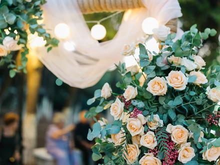 Angeliki's flower ark