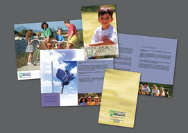 BROCHURE - OPTION 2