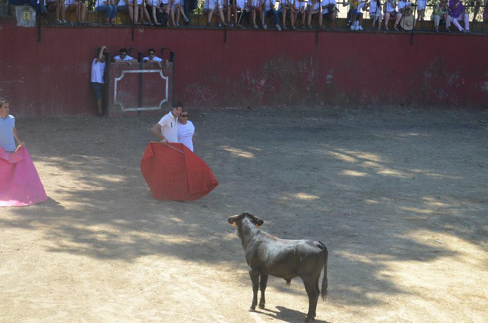 Bull Ring 2 Spain