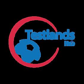 Testlands Hub Square version.png