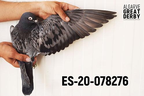 ES-20-078276