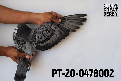 PT-20-0478002