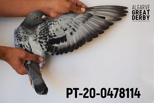 PT-20-0478114