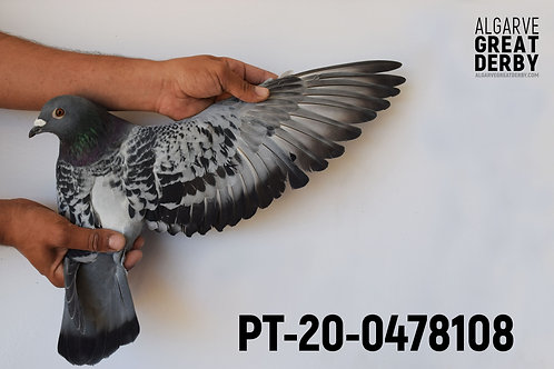 PT-20-0478108