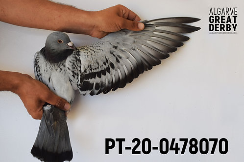 PT-20-0478070
