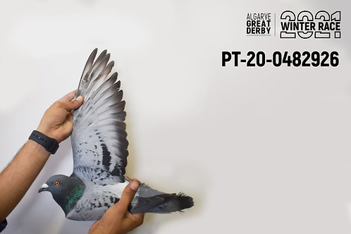 PT-20-0482926