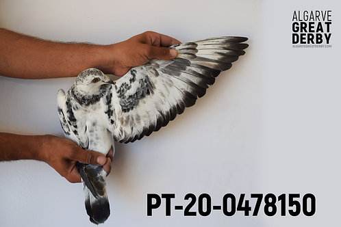 PT-20-0478150
