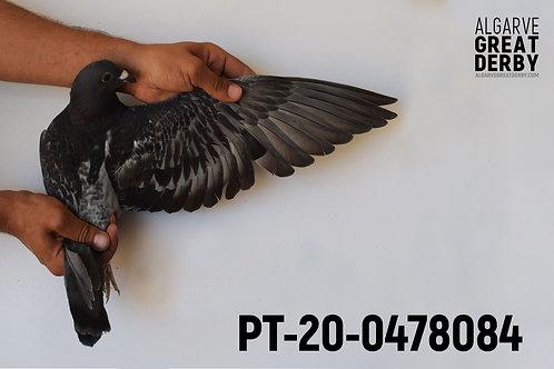 PT-20-0478084