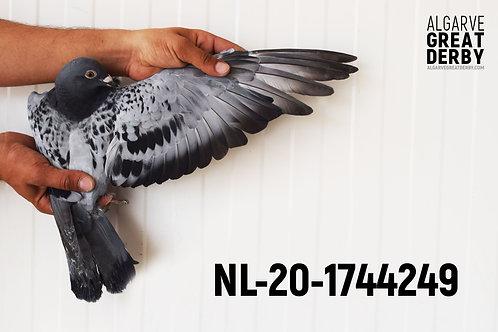 NL-20-1744249
