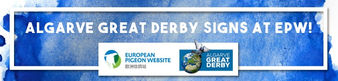 Algarve Great Derby e Pigeon Website