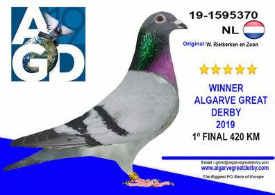 NL-1595370.jpg