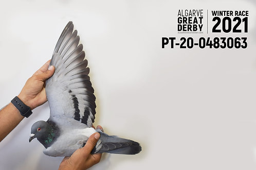 PT-20-0483063