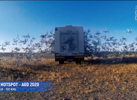 3º HOTSPOT - ALGARVE GREAT DERBY 2020