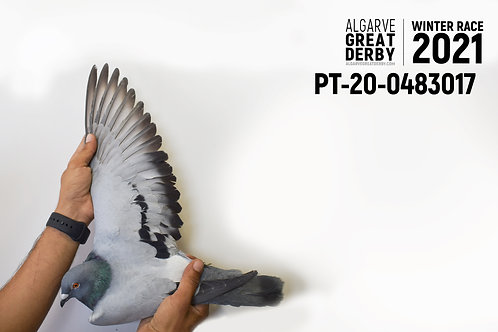 PT-20-0483017