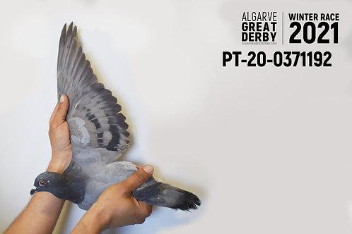 PT-20-0371192