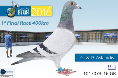 Vencedor 2016.jpg