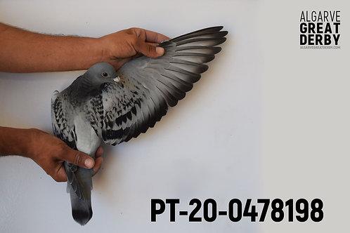 PT-20-0478198