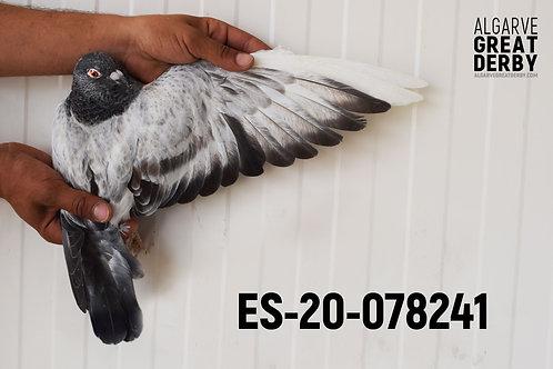 ES-20-078241