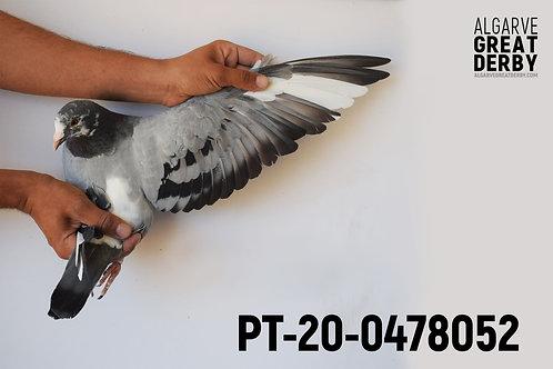 PT-20-0478052