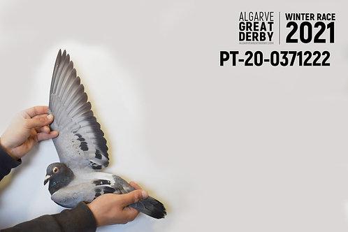 PT-20-0371222