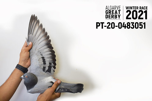 PT-20-0483051