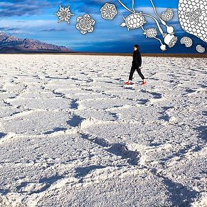 Salt Flat and Hexagons from The Desert Walk Series, an art print by 제뉴어리 조 윤 - January Yoon Cho