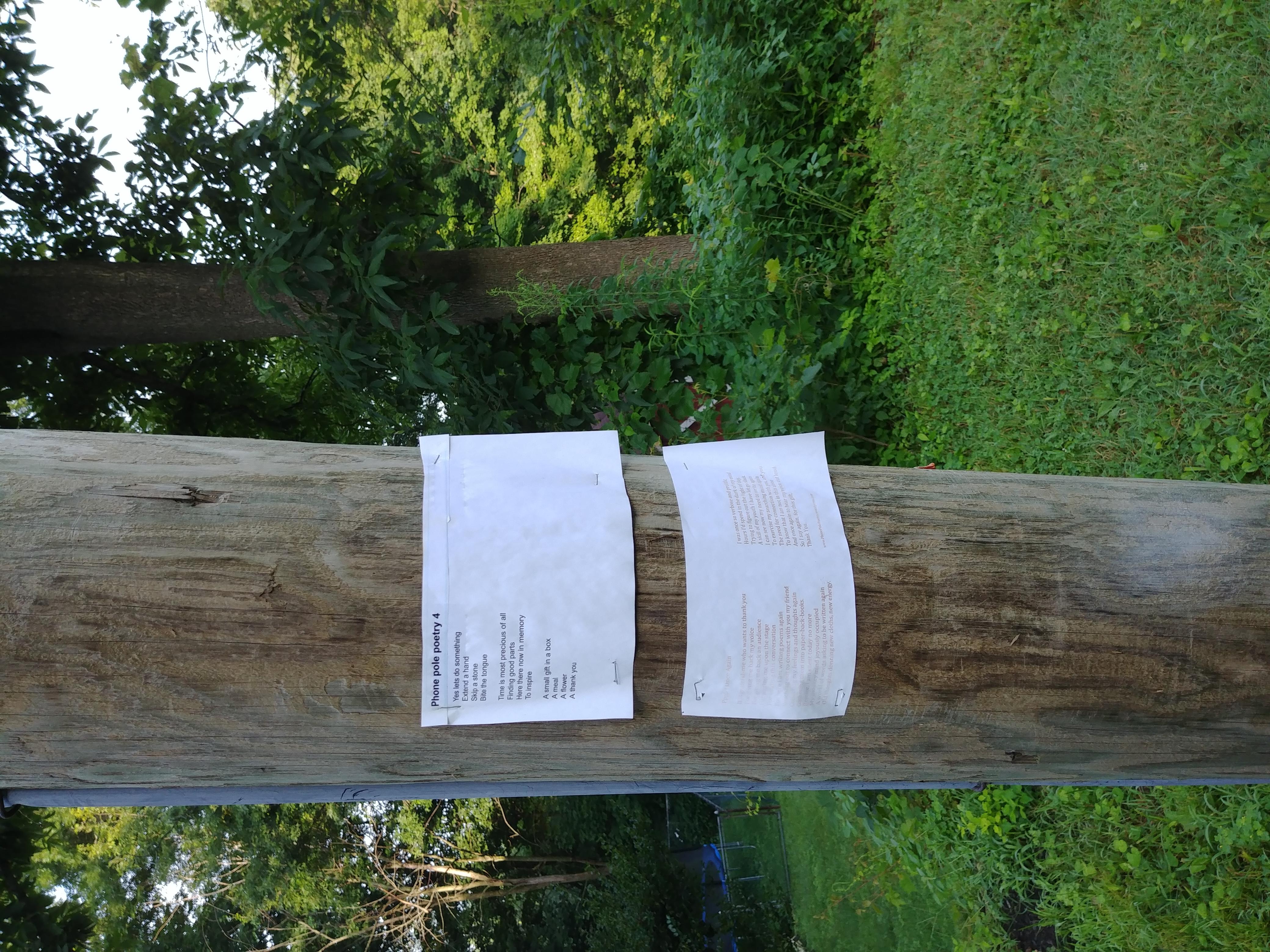 Phone Pole Poems 4 & 5